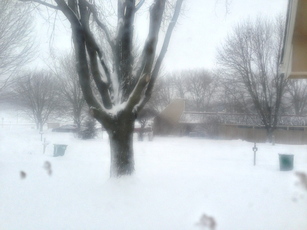 No, my camera is not out of focus. This is what fog and drifting snow look like together.