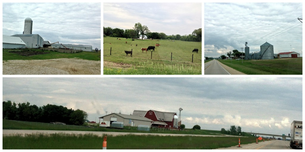 Rural Iowa Collage