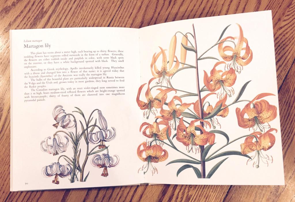 Gardens Flowers book